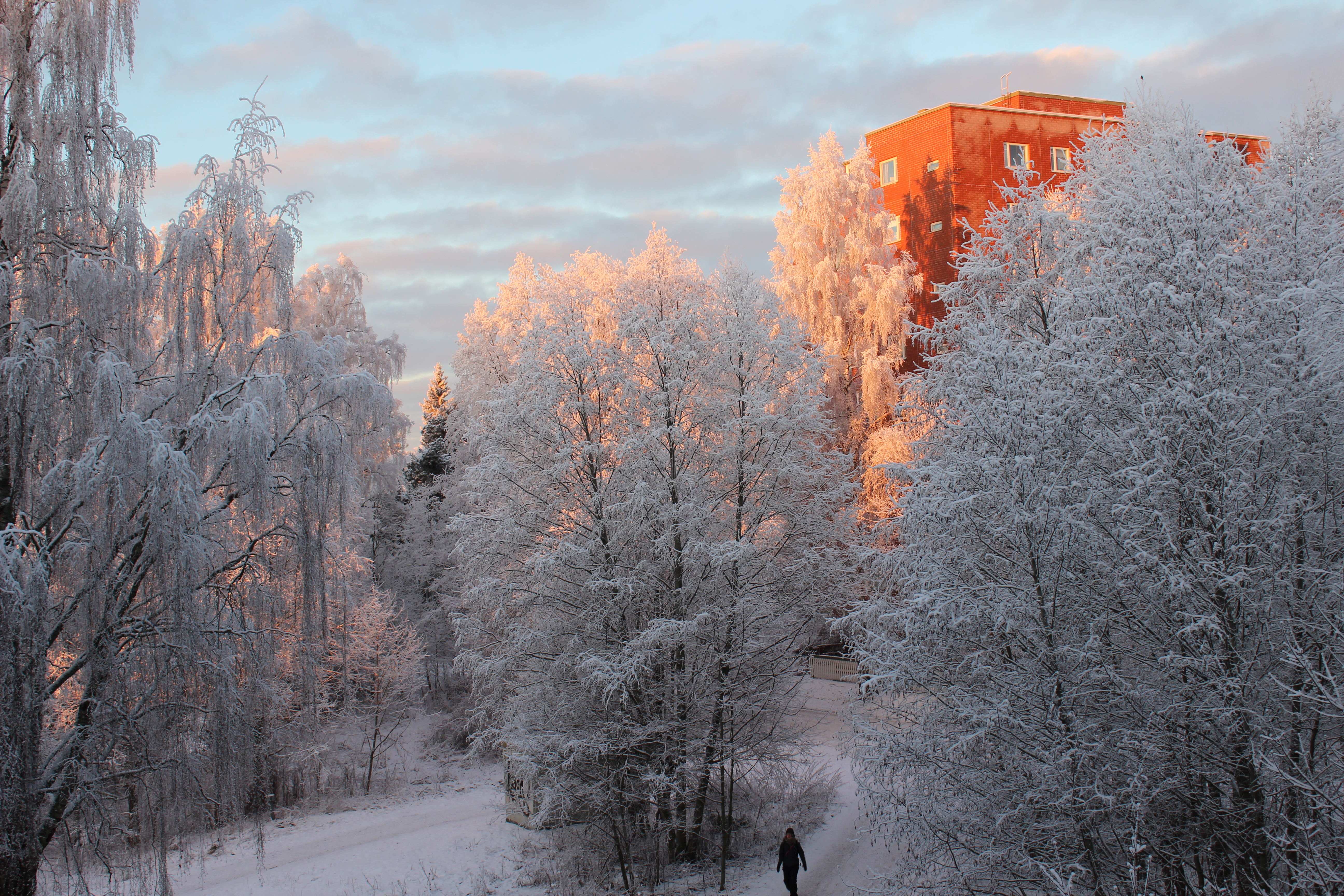 Talvinen maisema, aurinko paistaa.