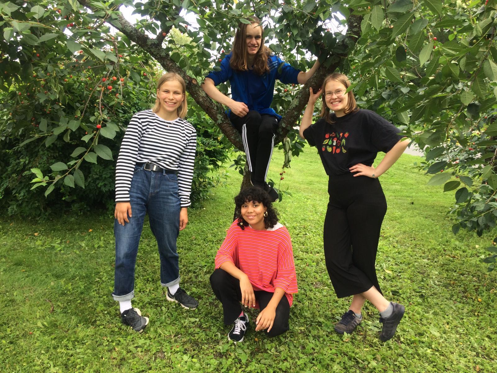 Neljä ihmistä puun alla.