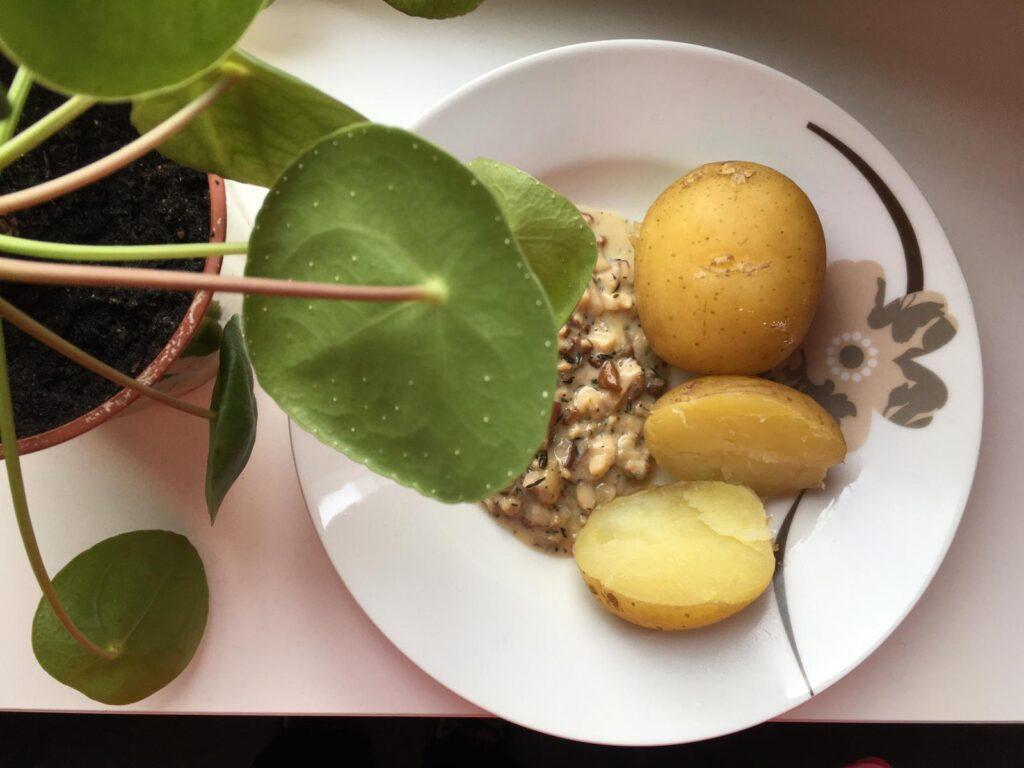 Ruoka-annos, jossa perunaa ja sienikastiketta