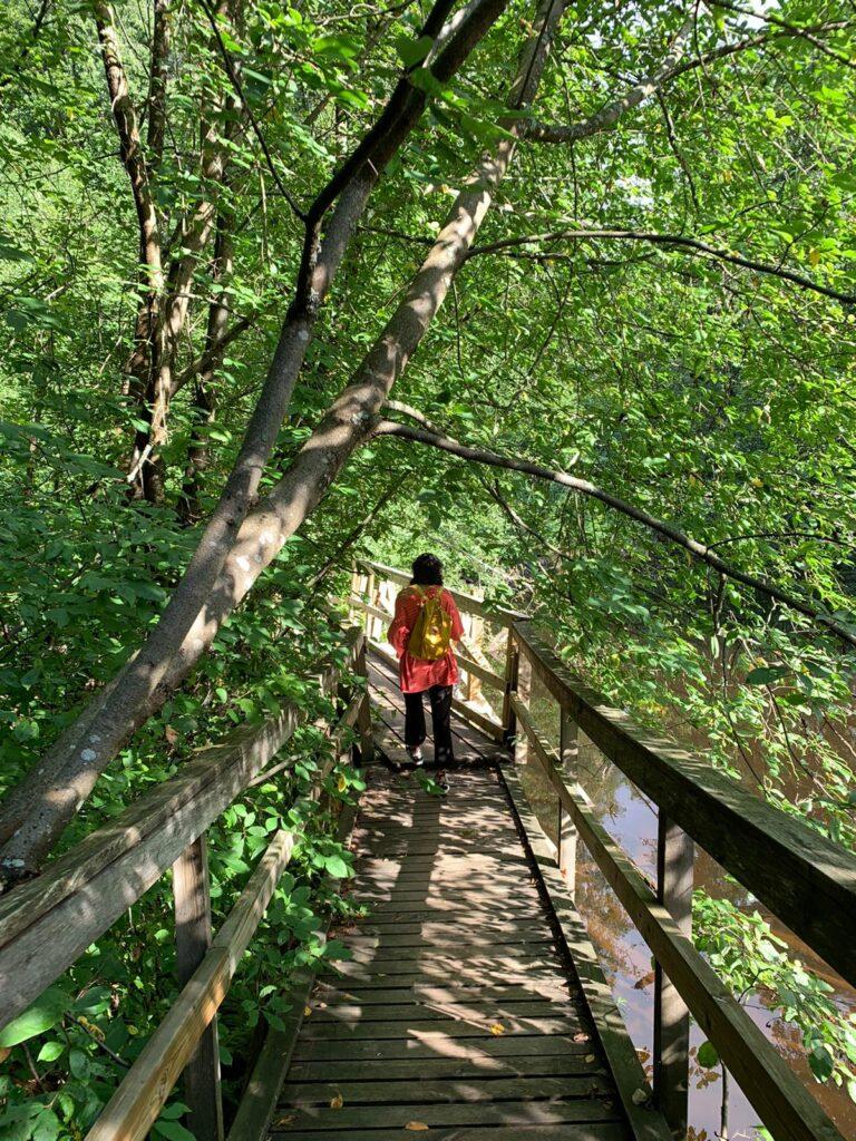 Helmi kävelee luontopolun sillalla