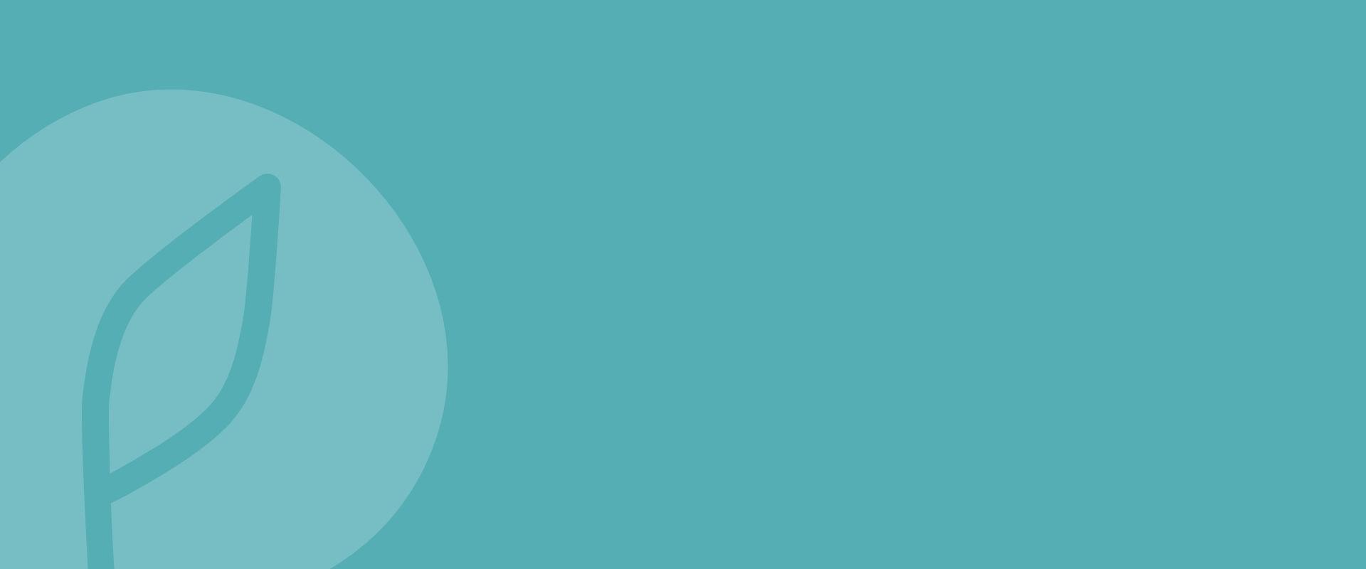 JAPA logo, turkoosi tausta.