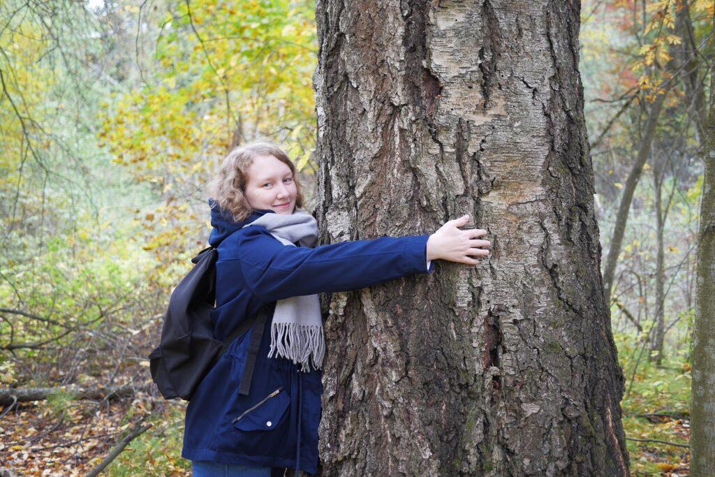 Helmi halaa isoa puuta syksyisissä maisemissa