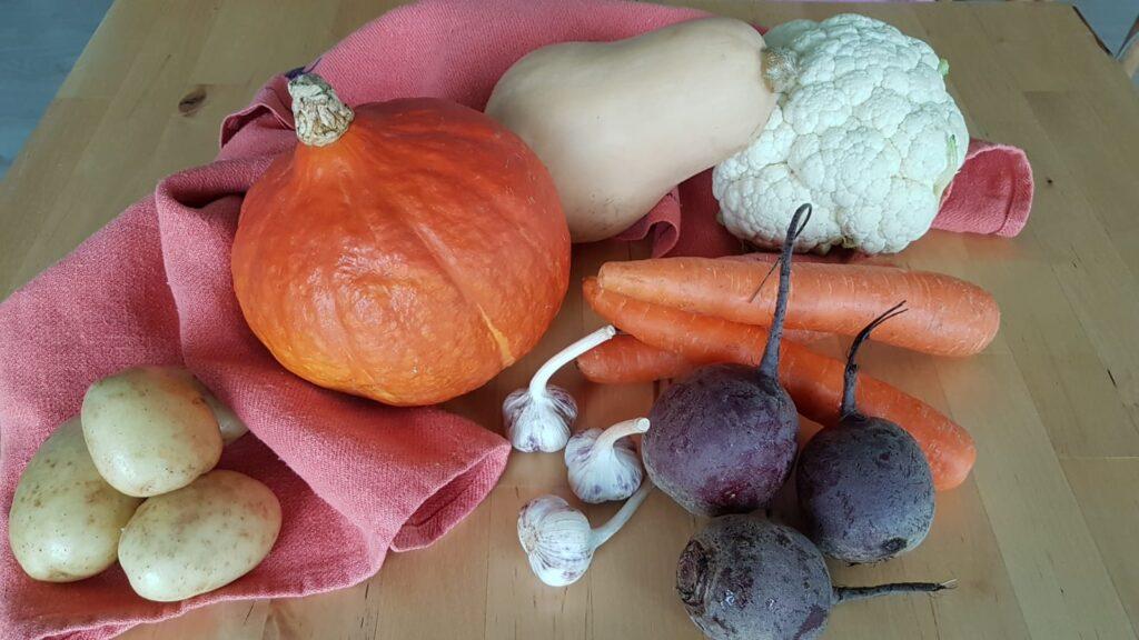 Pöydällä perunoita, kaksi kurpitsaa, porkkanoita, kukkakaali, punajuuria ja valkosipulia.