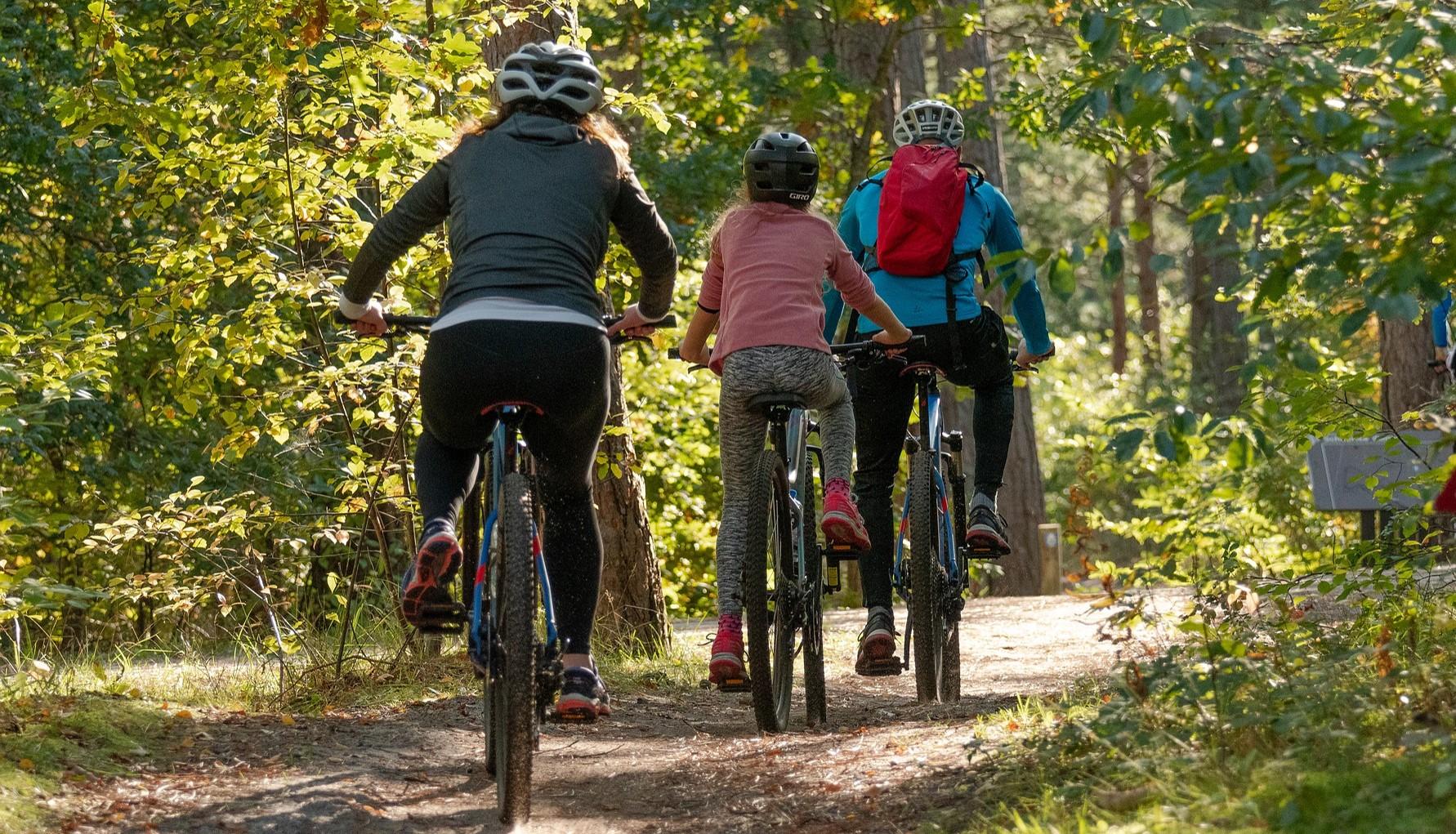 kolme pyöräilijää syksyisellä metsätiellä